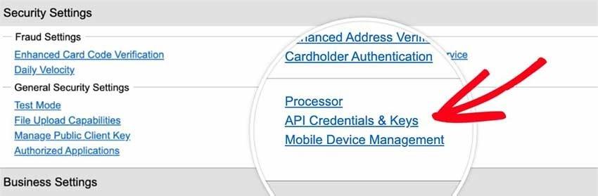 Open API Credentials
